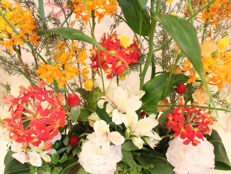 木下内科クリニックの生け花が新しくなりました「オレンジ」3