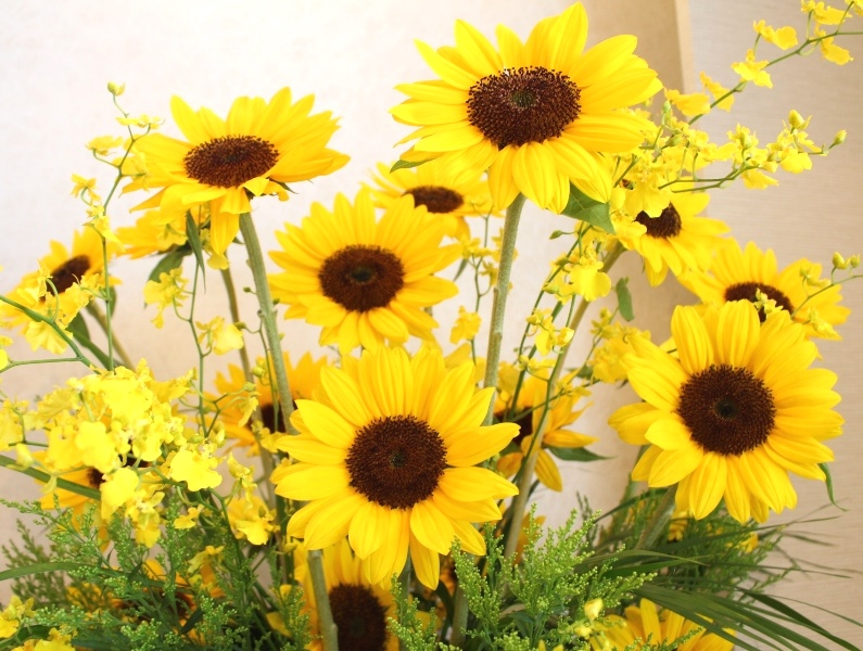 木下内科クリニックの生け花が新しくなりました「ひまわり」4